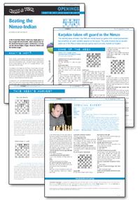 chessvibes openings