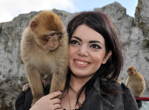 Gibraltar Rock 4