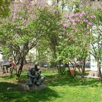 Grand Hotel Sofia garden3