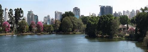 Ibirapuera Park 1