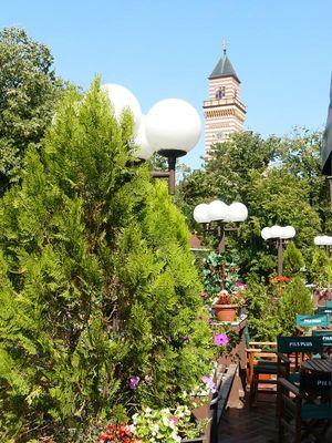 Paracin garden