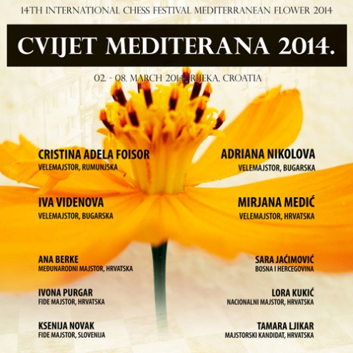 Mediterranean Flower 2014