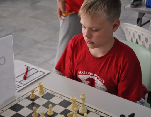 chess championship essay Essay on my favorite sportsstar  national level success came early for him when he won the national sub-junior chess championship in 1983  essay.