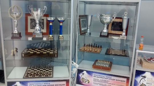 The Chess Museum