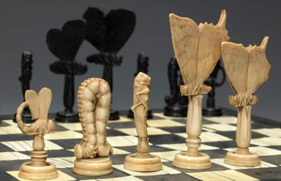 Insects Chess Set and Board