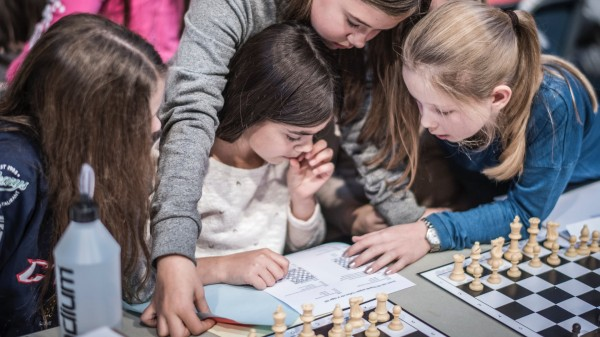Survey on Chess in Schools